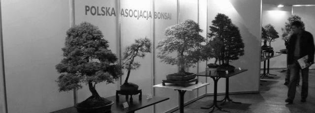 Wystawa Bonsai Polagra Poznań 2006