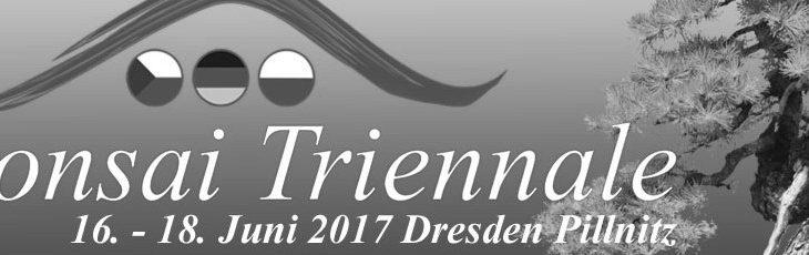 Bonsai Triennale Dresden 2017