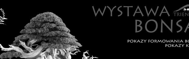 Bonsai Triennale Wojsławice 2019 – Relacja